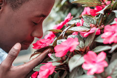 Man  sniffing the flowers Royalty Free Stock Photos