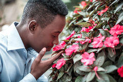 Man  sniffing the flowers Stock Photos