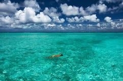 Man snorkeling Stock Photos