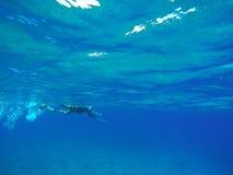 Man snorkeling in oahu, hawaii. Underwater perspective of a man snorkeling in the deep blue ocean Royalty Free Stock Image