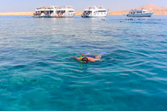 Man snorkeling off a tour boat Royalty Free Stock Photo