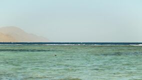 Man snorkeling in red sea, Beautiful landscape of blue sea and clear sky, waves in the sea and mountains on horizon