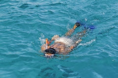 Man snorkeling in the Red Sea Royalty Free Stock Photo