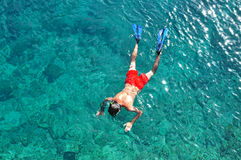 Man snorkeling in the sea Stock Photos