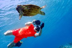Man snorkeling with sea turtle in the tropical water of Maldives Royalty Free Stock Image