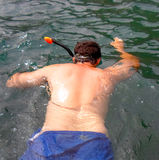 Man snorkeling Royalty Free Stock Photo