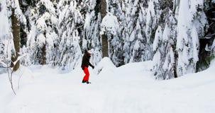 Man snowboarding through forest 4k. Man snowboarding through forest during winter 4k stock video