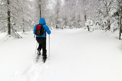 Man with snowshoes. In snow covered landscape stock photos