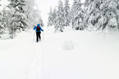 Man with snowshoes royalty free stock images