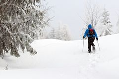 Man with snowshoes Stock Image