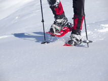 The man in snowshoes. Royalty Free Stock Photos