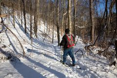 A Man Snowshoes Through the Woods. A man snowshoes on a trail through a forest. He`s wearing jeans, a black coat and an eye-catching red backpack Stock Image