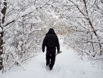 Man in a snowy forest royalty free stock photos