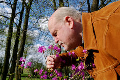 Man snuffing a flower. Royalty Free Stock Images