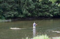 Man som är upptagen med flyfishing Arkivfoton