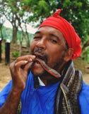 Man som äter ormar Arkivbilder