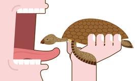 Man som äter sköldpaddan Förstörelse av amfibier eliminering av willen stock illustrationer