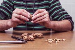 Man som öppnar några valnötter på en tabell Fotografering för Bildbyråer
