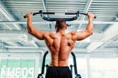 Man som övar på en armpress på en idrottshallbakgrund Yrkesmässig idrottshallutrustning Utbildning genomkörare, bodybuildingbegre Royaltyfri Fotografi