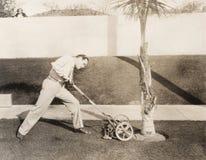 Man som anfaller palmträdet med gräsklipparen royaltyfria foton