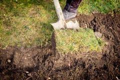 Man som använder spaden för gammalt gräva för gräsmatta royaltyfri bild