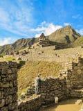Man som arbetar på Machu Picchu den arkeologiska platsen Arkivbilder