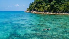 Man som bara snorklar i ett tropiskt hav över korallreven med klart blått kristalliskt vatten Perhentian ö, Malaysia royaltyfria bilder