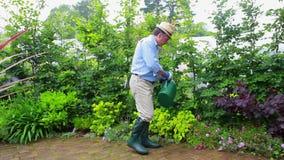 Man som bevattnar hans växter arkivfilmer