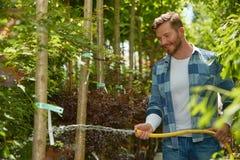 Man som bevattnar växter i trädgård Royaltyfri Fotografi