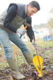 Man som bultar markören i trädgård Arkivfoto