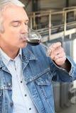 Man som dricker vin Arkivfoton