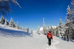 Man som fotvandrar i Carpathian berg