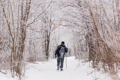 Man som fotvandrar i vinter på en snöslinga Arkivbild