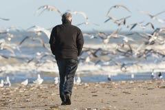 Man som fotvandrar på Katwijk aan Zee arkivbilder