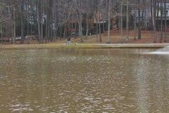 Man som går hundkapplöpning vid sjön arkivbilder