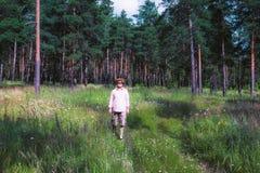 Man som går i pinjeskog Royaltyfria Foton