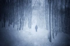 Man som går i vinterdröm royaltyfria foton