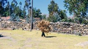 Man som hårt arbetar i Peru Royaltyfri Fotografi