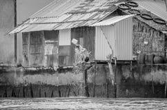 Man som har ett bad på Mekonget River Arkivbild