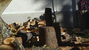Man som hugger av trä med en yxa 10 arkivfilmer
