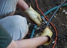 Man som installerar DIY-spridare i trädgård Royaltyfri Fotografi