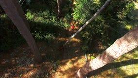 Man som joggar på skogbanan lager videofilmer