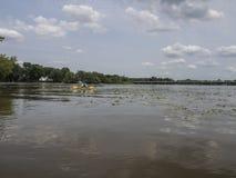 Man som kayaking på floden Royaltyfria Foton