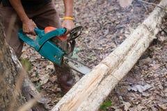 Man som klipper trät med chainsawen Royaltyfri Bild