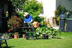 Man som lägger in växter, Milton Abbas Arkivfoto