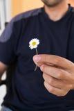 Man som lite ger en gåva med tusenskönablomman Fokusera på blomma close upp Royaltyfria Foton