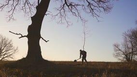 Man som planterar trädet i fält Solig soluppgång, solnedgång silhouette Vår eller sommar arkivfilmer