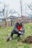 man som planterar treen Royaltyfria Bilder
