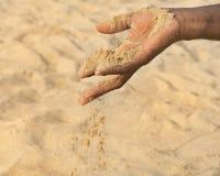 Man som rymmer någon sand i handen: torka och omvandlande till öken royaltyfria foton
