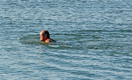 Man som simmar den engelska kanalen Arkivbild